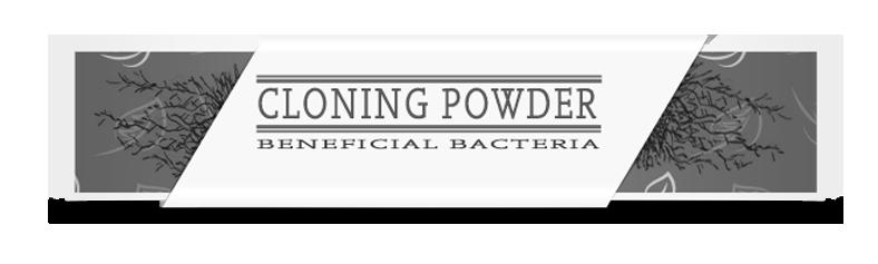 Cloning Powder