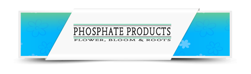 Phosphate Products