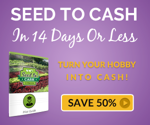 Seed to Cash