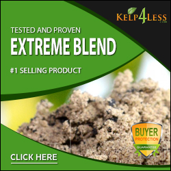 Shop Extreme Blend