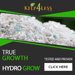 Shop Hydro Grow Pack