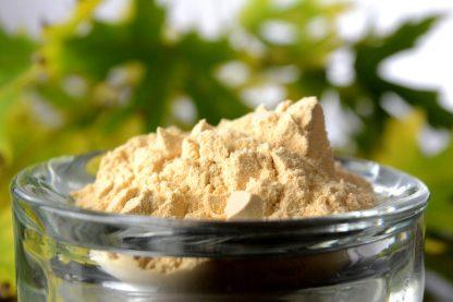 Yucca Powder