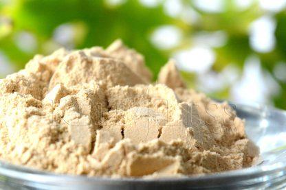 Enzyme Powder