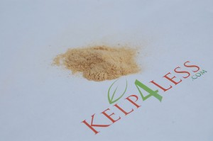 Soluble Enzyme Powder