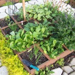I don't have room to grow a garden . . . What do I do?
