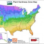 Hardy-har Har. . . what's a hardiness zone?