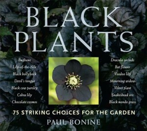 Black Plants, by Paul Bonine
