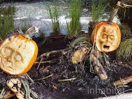 pumpkin compost