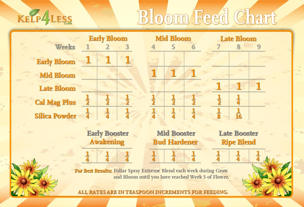 Bloom-Feed-Chart-2015