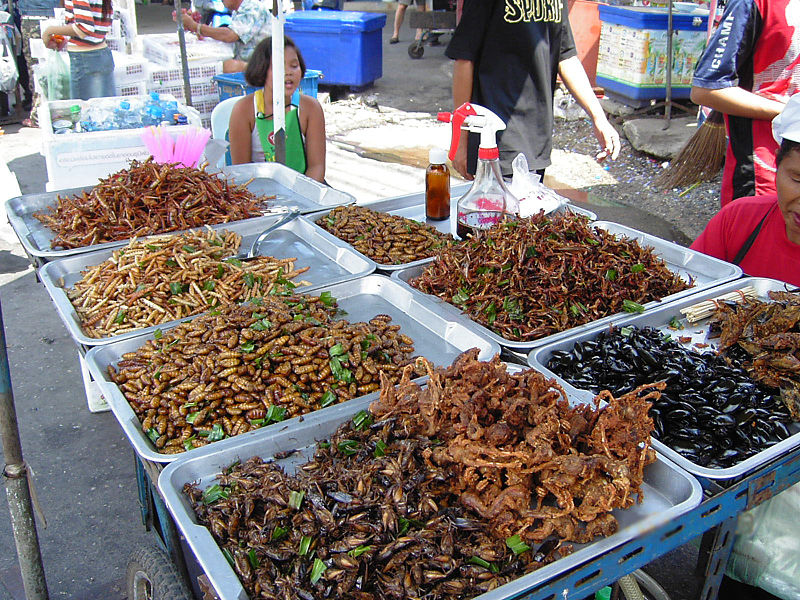 Friedcrickets.Thailand