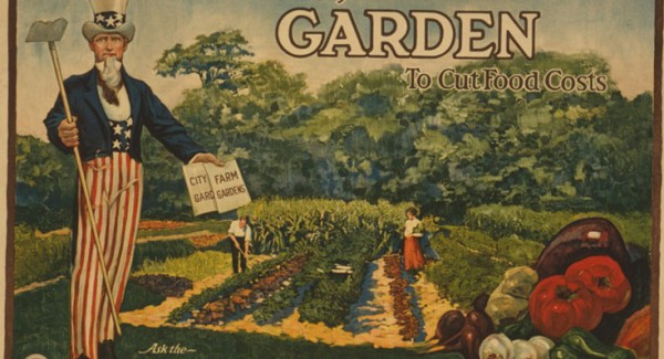 GardenToCutFoodCosts