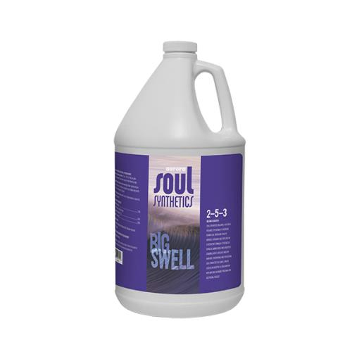 Big Swell Gallon