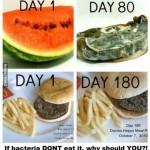 FoodPreservatives