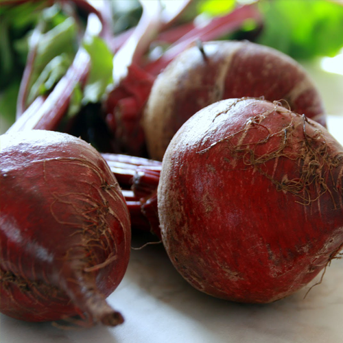 Beets-Growers-Guide