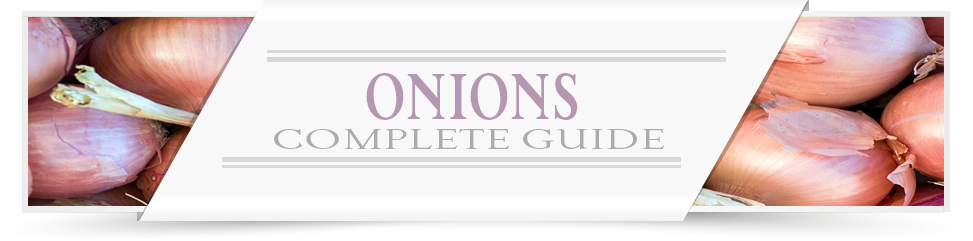 Onion-Growers-Guide