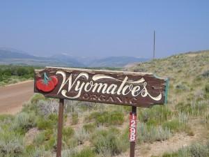 Wyomatoes.2