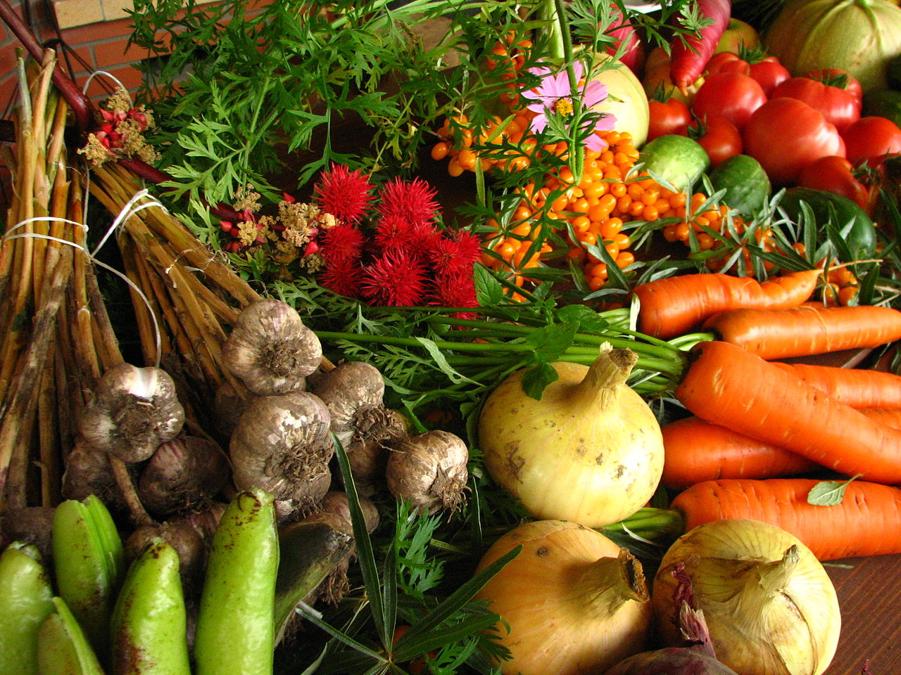 1280px-Ecologically_grown_vegetables