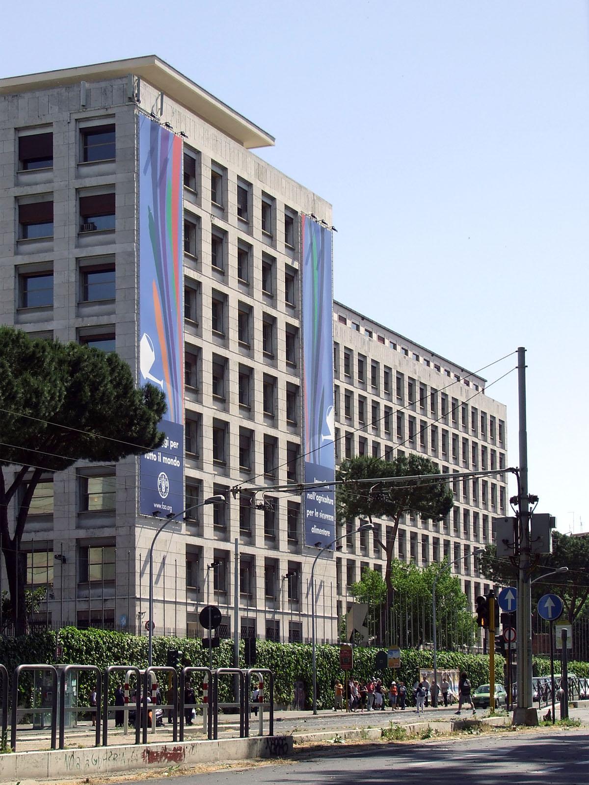 FAO_Roma_832