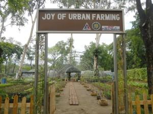 UrbanFarming