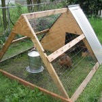 800px-A-frame_chicken_coop,_Portland_OR