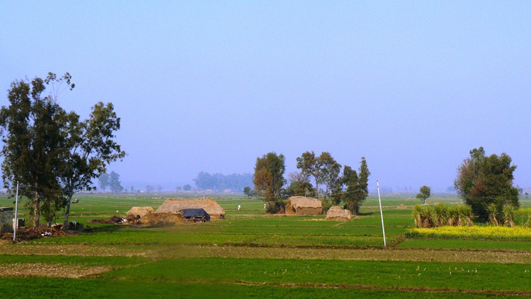 Panoramic_view_of_the_fields_rural_India_2012