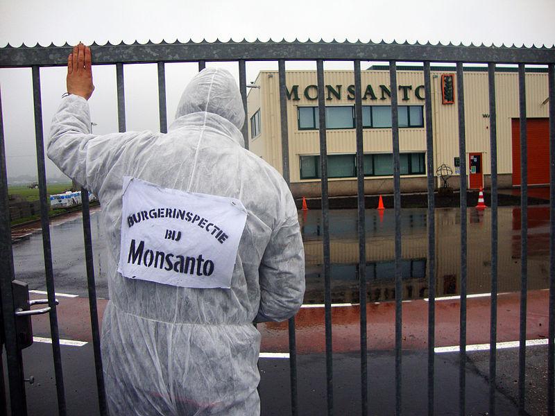 800px-Burgerinspectie_bij_Monsanto_Enkhuizen_2010-11-02_b