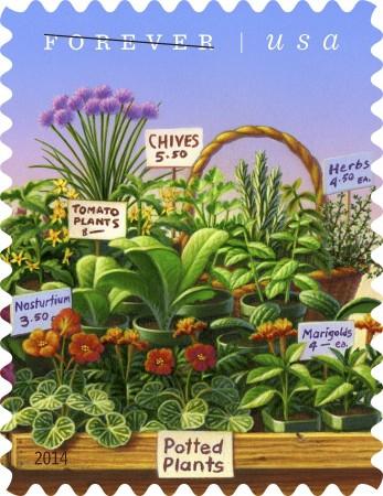 farmers-market-stamps-b54bb94b3bd5a804