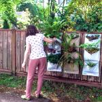 The Fence Garden