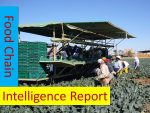 Food Chain Intelligence Report