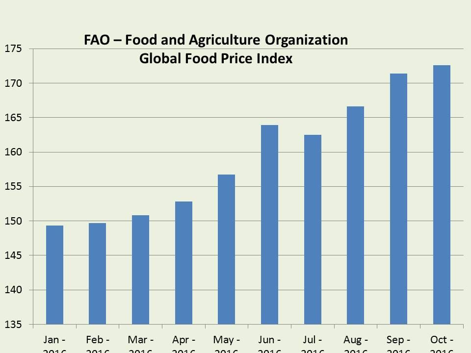 global-food-price-index