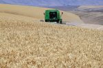 USA Farmland Transition