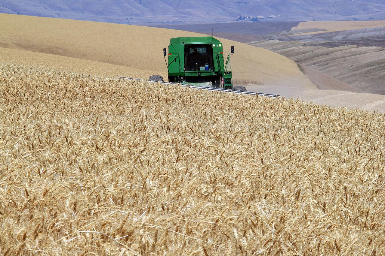harvest_time_9322925938