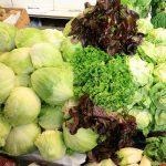 Lettuce_mix