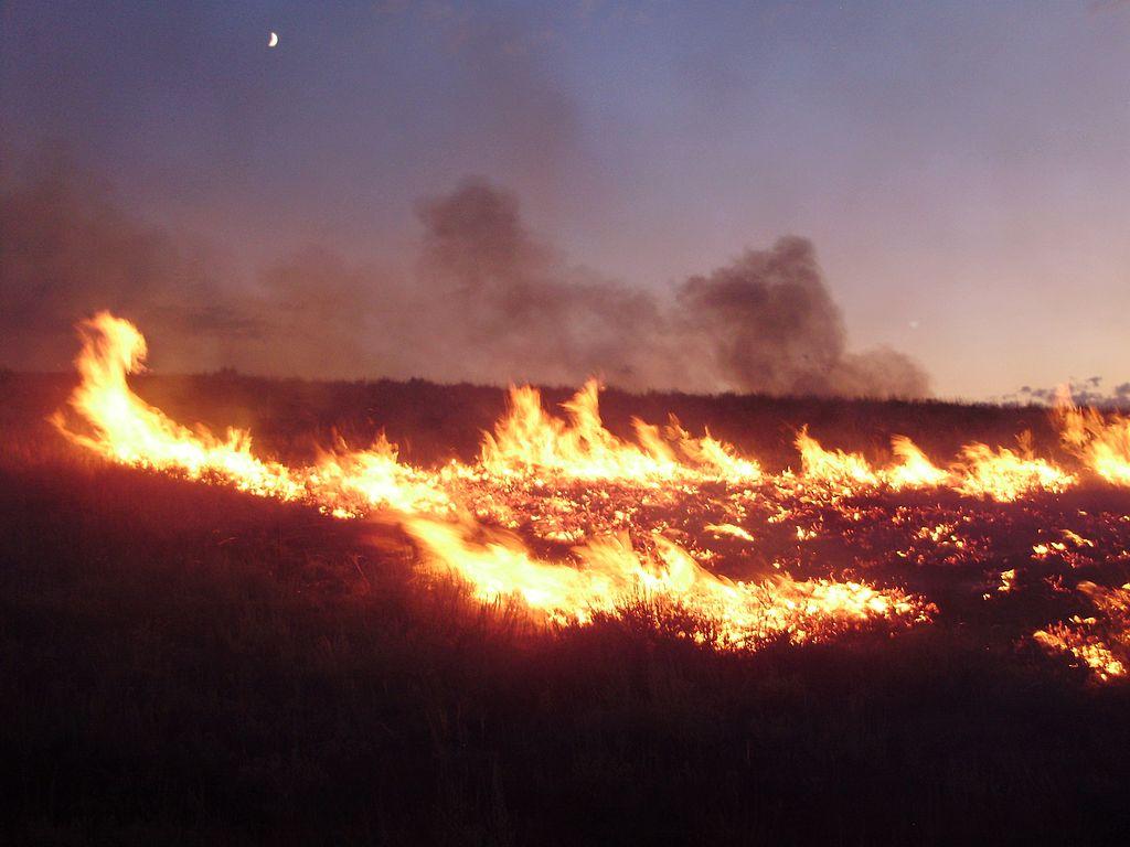 2011-08-04_20_00_00_Susie_Fire_in_the_Adobe_Range_west_of_Elko_Nevada