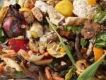 Tackling Food Waste on a Grand Scale