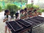 Community Gardening Mania hits Singapore (It's a family activity)