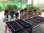 Community Gardening Mania hits Singapore (It's a family activity)