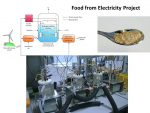 Food from Electricity?