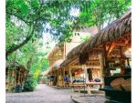A Message for the Future – The Green School in Bali
