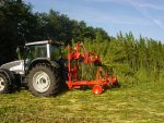 Industrial Hemp Gets the Green Light in Canada