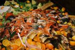 Who is Responsible for Food Waste?