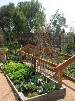 America's Largest School Garden Program