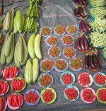 Food Gardens as Urban Landscapes in Desert City