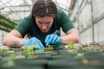 Technology Companies Getting Into Horticulture