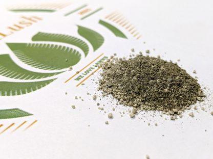 Effortlush-Green-Lawn-and-Turf-3