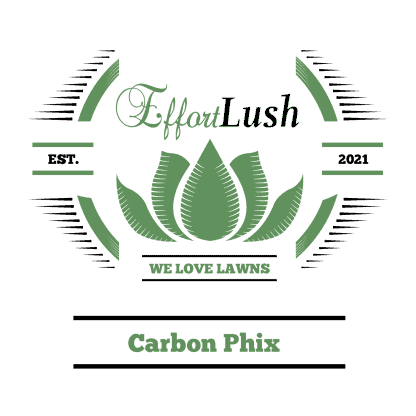Carbon Phix