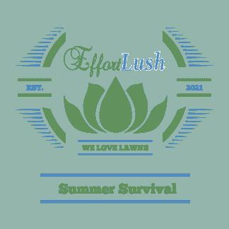 Summer-Survival
