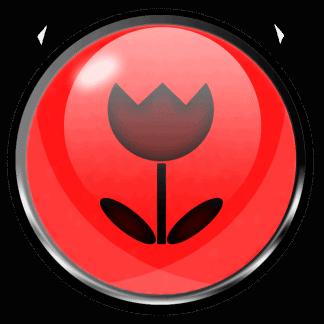 Bloom Enhancers