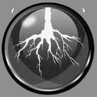 Root Enhancement