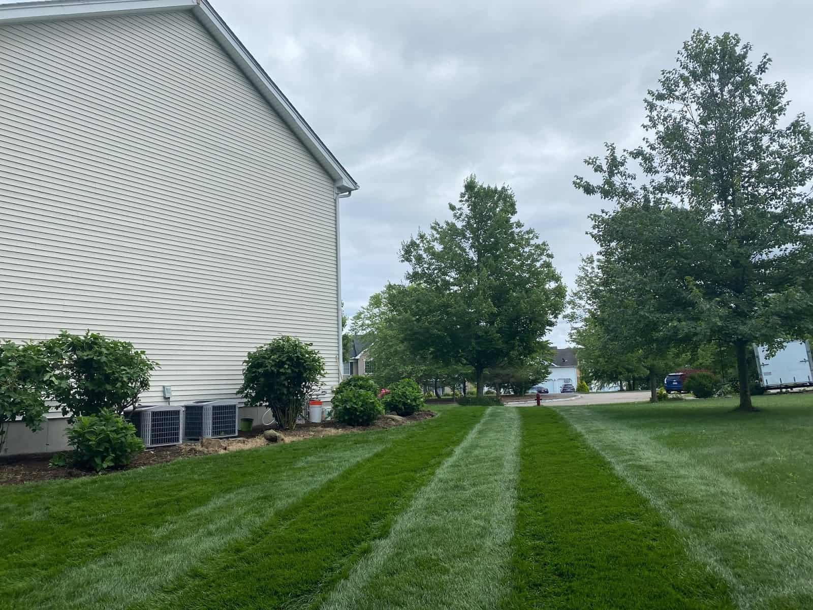 Stress Free Lawn in Summer 2
